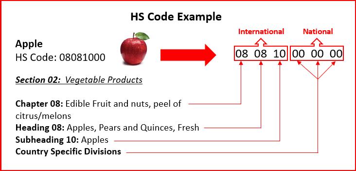 تعرفه سیب در صادرات و واردات کالا APPLE HS
