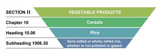 ساختار طبقه بندی و تعرفه برنج Rice Hs code