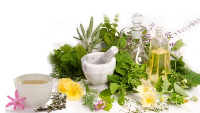 سند گیاهان دارویی